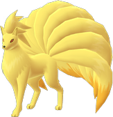 Ninetales Spawn Locations