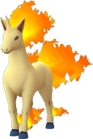 rapidash Pokemon Go