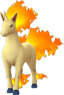 Pokemon Let's GO Rapidash