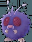 Pokemon Let's GO Venonat