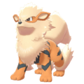 Pokemon Sword and Shield Arcanine