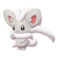 Pokemon Sword and Shield Cinccino