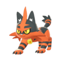 Pokemon Sword and Shield Torracat