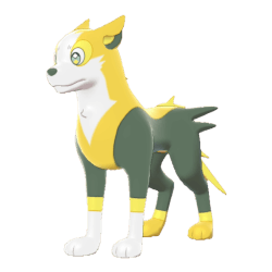 Pokemon Sword and Shield Boltund