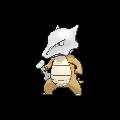Pokemon Sword and Shield Marowak