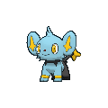 Pokemon Sword and Shield Shinx