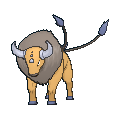 Pokemon Sword and Shield Tauros