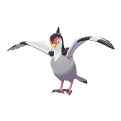 Pokemon Sword and Shield Tranquill