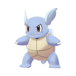 Pokemon Sword and Shield Wartortle