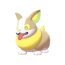Pokemon Sword and Shield Yamper
