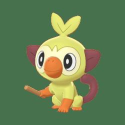 Pokemon Sword and Shield Shiny Grookey