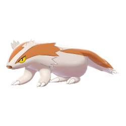 Pokemon Sword and Shield Shiny Linoone