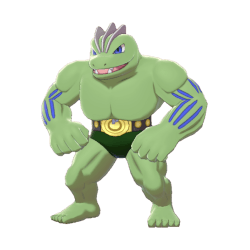 Pokemon Sword and Shield Shiny Machoke