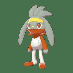 Pokemon Sword and Shield Shiny Raboot