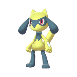 Pokemon Sword and Shield Shiny Riolu