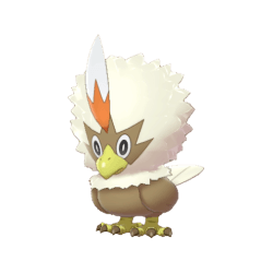 Pokemon Sword and Shield Shiny Rufflet