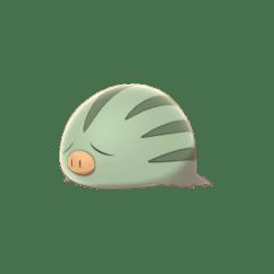 Pokemon Sword and Shield Shiny Swinub