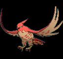 Pokemon Sword and Shield Shiny Talonflame