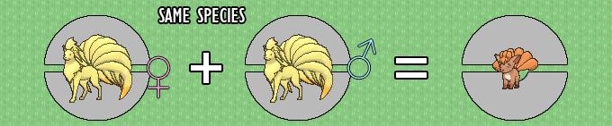 Pokemon-GO-Breeding