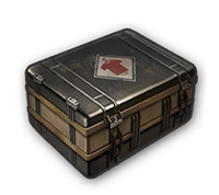 PlayerUnknownsBattleground-Pre-Order-Crate