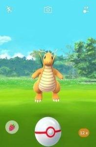 Pokemon GO Premier Balls