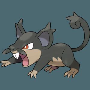 rattata dark