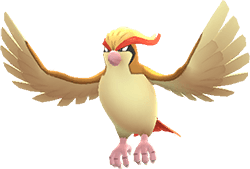 Pidgeot Pokemon Lets GO