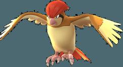 Pidgeotto Pokemon Lets GO
