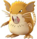 Raticate Pokemon Lets GO