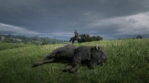 Red Dead Redemption 2 Hunting and Skinning