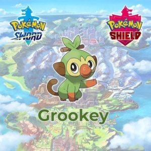Grookey-Pokemon-Sword-Shield