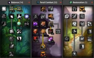 WoW Classic Feral Combat Druid Build