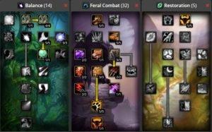 WoW Classic Feral Combat Druid Build