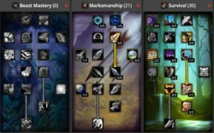 WoW Classic Hunter Builds