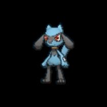 Pokemon S&S Riolu