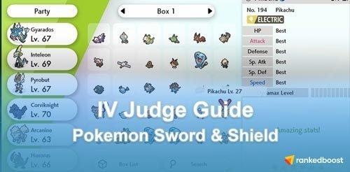 IV-Judge