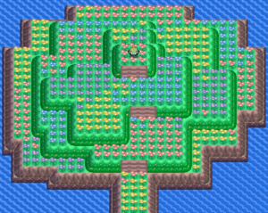 Pokemon Diamond and Pearl Flower Paradise Guide