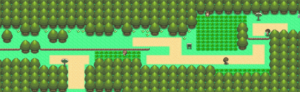Pokemon Diamond and Pearl Route 201 Guide